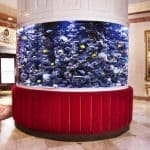 The Kimberly Hotel & Suites New York Lobby Aquarium